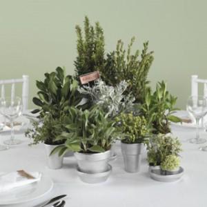 potted-plant-centerpieces04
