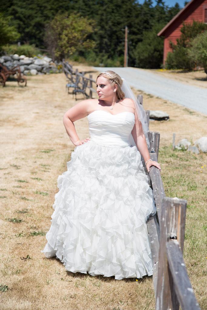 plus size wedding gown, plus size bride, tulle, plus size david's bridal wedding gown
