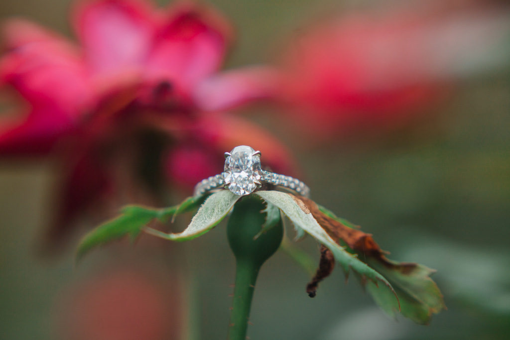 ENGAGEMENT   Where Nature and Art Collide in North Carolina   Hannah Nicole Photography   Pretty Pear Bride